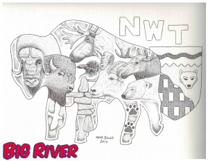 Big River Colouring Bison